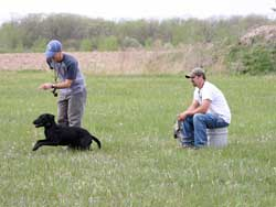 Chris Wilson working with a customer and his hunting dog